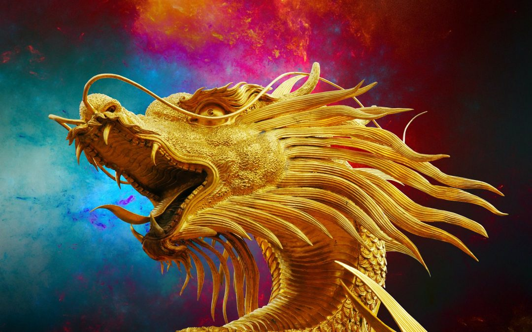 CONFESSIONS OF A PUBLIC SPEAKER: THE DRAGON IN THE ROOM